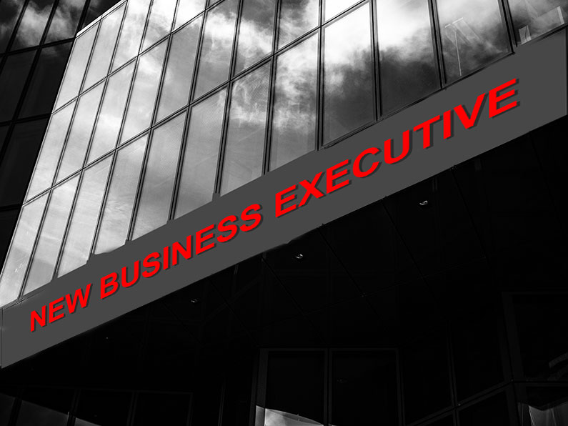 New Business Executive